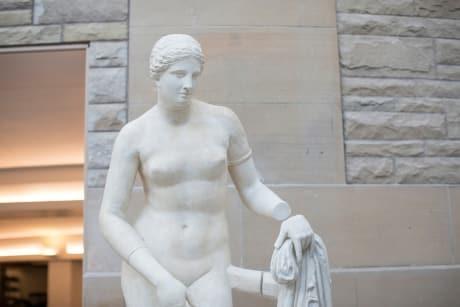 Plaster cast of a Greek statue in Klarman Hall.