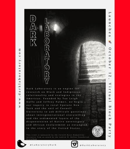 Dark_Lab_poster